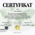 Certyfikat_SI